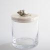 .Glass Jar with Murex Shell