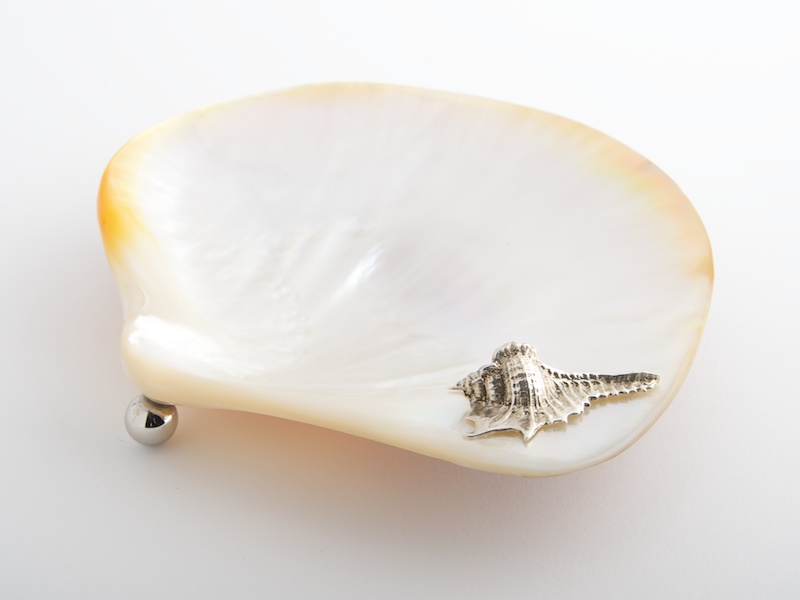 Shell Mother of Pearl