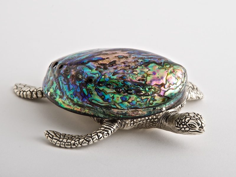Georgina Turtle