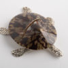 Place Card Holder Turtle