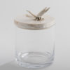 .Glass Jar with Dragonfly.