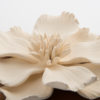 Magnolia Box