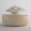 Petal White Box